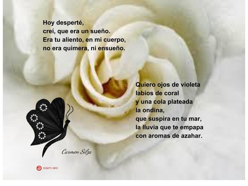 ===Poremas a flor de piel=== Frases-de-carmen-silza-1